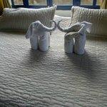 Las toallas que nos esperan