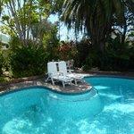 Der Pool im kleinen, sehr schönen Garten