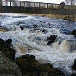 Linton Falls Foot Bridge