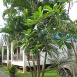 Photo of Boon Piya Resort