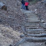 Four Seasons Trail