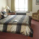 Room 303; Standard King
