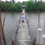 bridge to resort across the mangroves