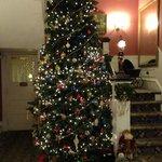 Christmas Tree on 2 Floors!