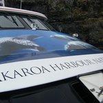 the catamaran  we took