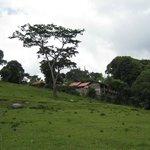 Mbahe Farm