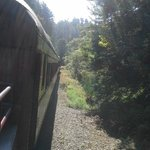 Skunk Train view from open cart