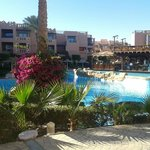 Foto di Rehana Sharm Resort