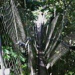 Scary swing bridge