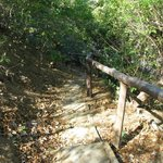 "The path down to the ""private"" beach at El Sabanero"