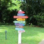 Colourful directional signs
