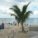 Royal Palms, 7 Mile Beach