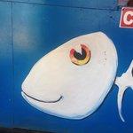 fish on wall