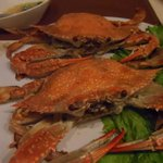 blue crabs phase 2