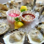 Fresh Oysters Daily