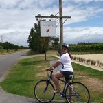 Cycling to Poppies Winery