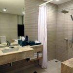 洗面化粧台、シャワールーム