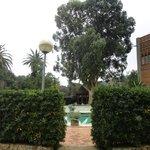 jardin con piscina del restaurante