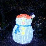 Christmas lights (Dec-Jan)