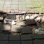 broken tiles on the walking path