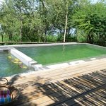 lovely pool using no chemicals