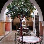 Dining area with orange tree