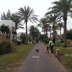 Part of the resort
