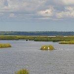 Forsythe National Wildlife Refuge