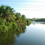 The lagoon (the guesthouse is on the left side)