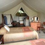 tent 35