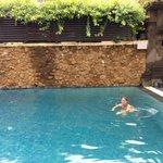 Rear Pool