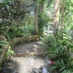 Coyaba Gardens