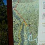 map of walk trails