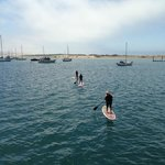 Stand Up paddling on the Bay