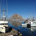 The harbor in Morro Bay