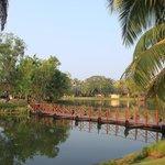 Bridge to the meditation centre
