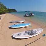 Reef Stand Up Paddle Tours