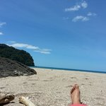 Homunga Beach (a short walk from Manawa Ridge)