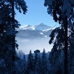 Auf dem Weg von ob. Gletscher nach Grindelwald