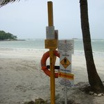 Warning signposts on the beach