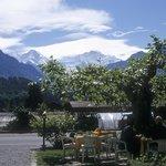 "The ""Jungfrau"""