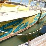 Sea Screamer in its mooring, Clearwater, Florida