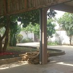 The Front Garden Area
