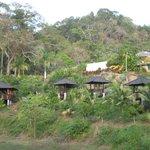 Hammock houses