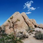 Two pyramids at Live Oak campground near Jumbo Rocks