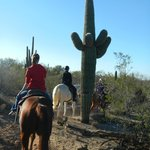 Afternoon ride in Saguaro