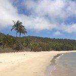 Svendsen's Beach