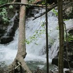 Waterfall just before one starts ascending Mount Tammany
