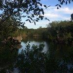 Dagny Johnson Key Largo Hammock Botanical State Park January 2014