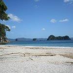 stunning Hahei beach